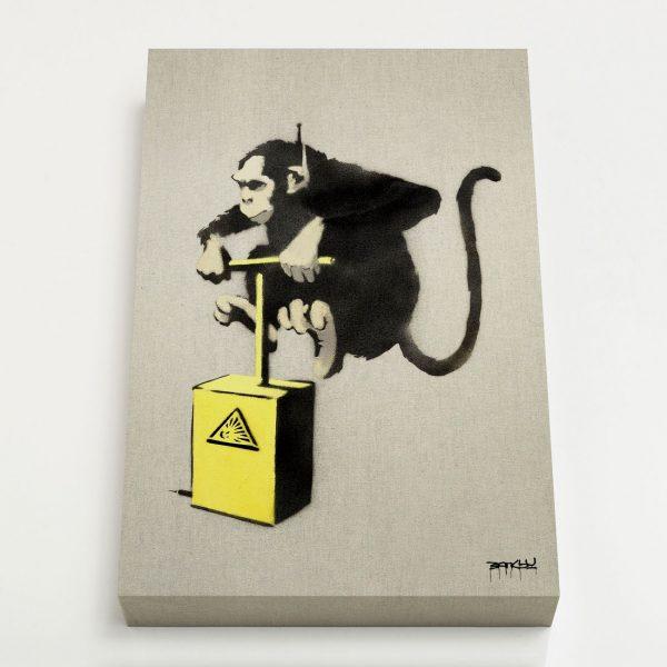 Quadro Canvas - Monkey Detonator 1