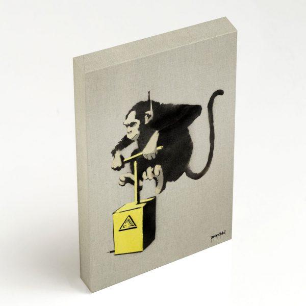 Quadro Canvas - Monkey Detonator 2