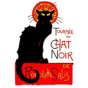 Camisa Feminina – Chat Noir