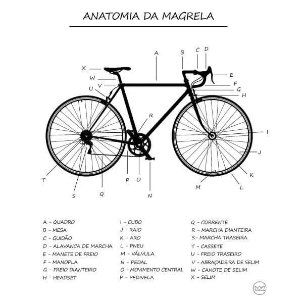 Camisa Feminina - Anatomia da Magrela 1