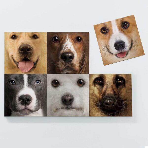 Porta Copos Magnéticos - Cachorros 3