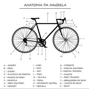 Camisa feminina - Anatomia da Magrela 2