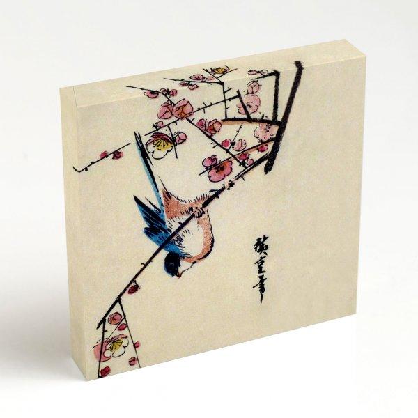 Quadro Canvas – Pássaros 5