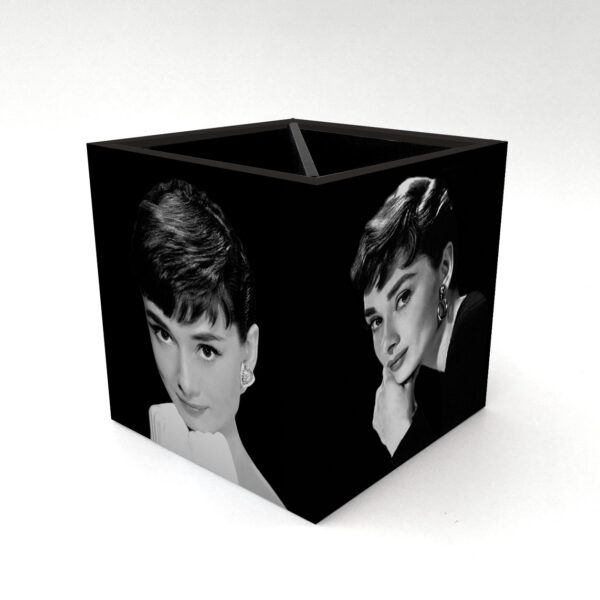 Porta Controle Audrey Hepburn 4